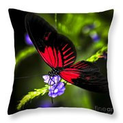 Red Heliconius Dora Butterfly Throw Pillow