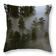 Redwood Creek Overlook With Giant Redwoods Sticking Out Above Lo Throw Pillow