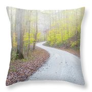 Road Passing Through A Forest Throw Pillow