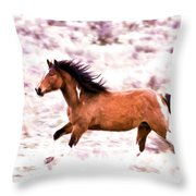 Chasing Freedom Throw Pillow