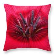 Scarlet Flax Throw Pillow