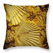 Seashell In Stone Throw Pillow