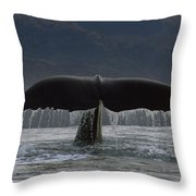 Sperm Whale Tail New Zealand Throw Pillow