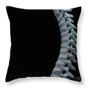 Spinal Anatomy Throw Pillow