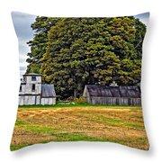 5 Star Barns Throw Pillow