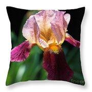 Tall Bearded Iris Named Indian Chief Throw Pillow
