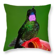 Tourmaline Sunangel Throw Pillow