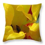 Triumph Tulip Named Washington Throw Pillow