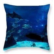 Underwater View Throw Pillow