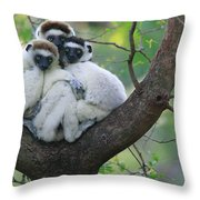 Verreauxs Sifakas Cuddling Throw Pillow