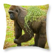 Western Lowland Gorilla Female Throw Pillow