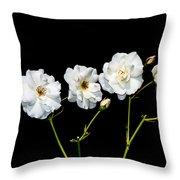 5 White Roses On Black Throw Pillow
