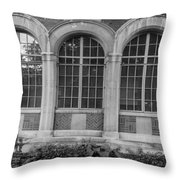 5 Windows  Throw Pillow