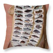 50 Fish From American Waters Throw Pillow by Georgia Fowler