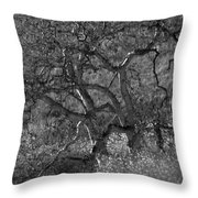 50 Shades Of Gray Trees Throw Pillow