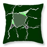 5040.16.5 Throw Pillow