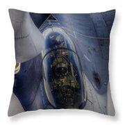 507001-3 Throw Pillow