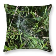 5153 Throw Pillow