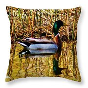 5.4.2014 Wild Mallard Throw Pillow