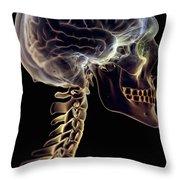 Human Brain Throw Pillow