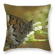 Nature And Travel Images Throw Pillow