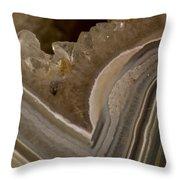 Agate Closeup Throw Pillow