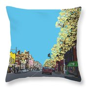 5th Ave And Garfield Park Slope Brooklyn Throw Pillow