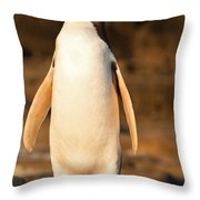 Adult Nz Yellow-eyed Penguin Or Hoiho On Shore Throw Pillow