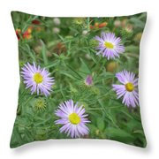 6 Asters Left Throw Pillow