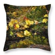 Autumn 2013 Throw Pillow