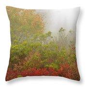 Autumn Fog Dolly Sods Throw Pillow