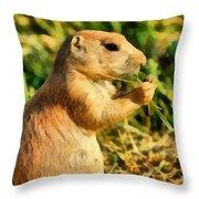 Black-tailed Prairie Dog Throw Pillow
