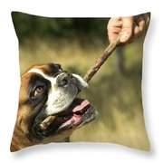 Boxer Dog Throw Pillow by Jean-Michel Labat