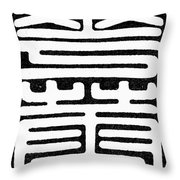 Calligraphy Chinese Throw Pillow