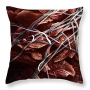 Candida And Epithelial Cells Throw Pillow by David M. Phillips