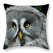 Chouette Lapone Strix Nebulosa Throw Pillow
