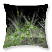 Crystal Flower Throw Pillow