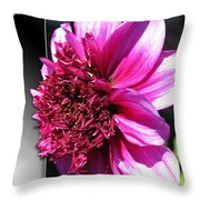 Dahlia Named Blue Bayou Throw Pillow