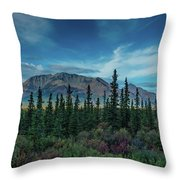 Denali Highway, Route 8, Offers Views Throw Pillow