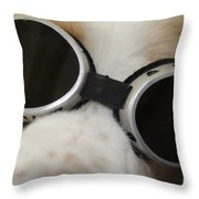 Dog With Sunglasses Throw Pillow
