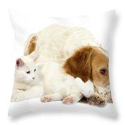 Epagneul Francais Throw Pillow