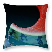Exotic Frogs Throw Pillow