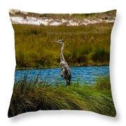 Florida Beach Scene Throw Pillow