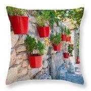 Flower Pots 2 Throw Pillow