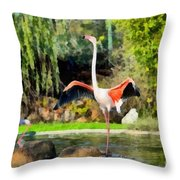 Greater Flamingos Throw Pillow