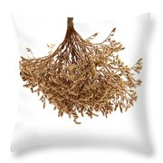 Hanging Dried Flowers Bunch Throw Pillow