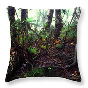 Misty Rainforest El Yunque Throw Pillow