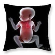 Newborn Anatomy Throw Pillow