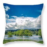 Nisqually Wildlife Refuge Throw Pillow