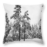 Pine Forest Winter Throw Pillow